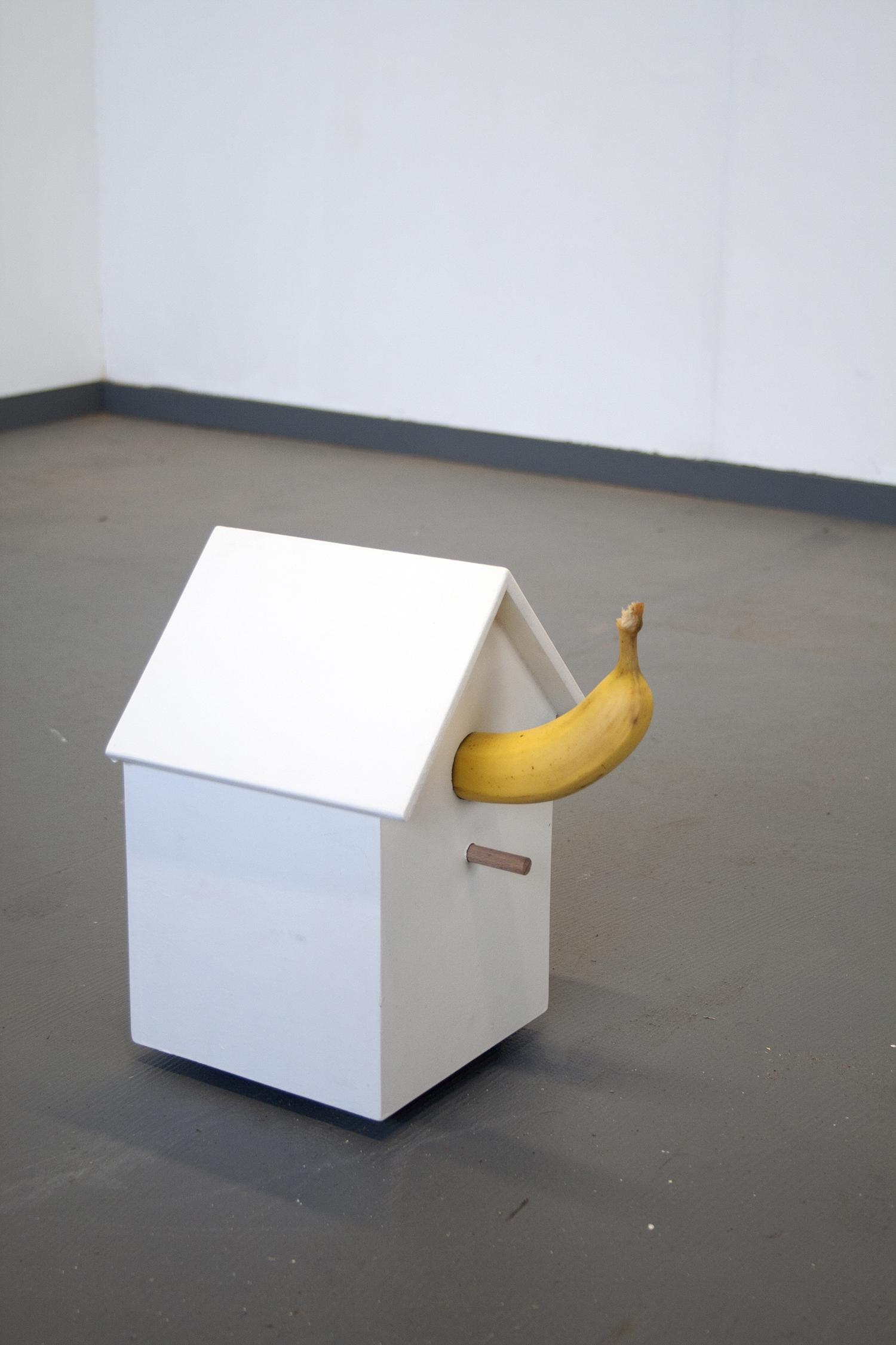 Birdhouse Banana 2013 Daan Lievense & Danny Foolen