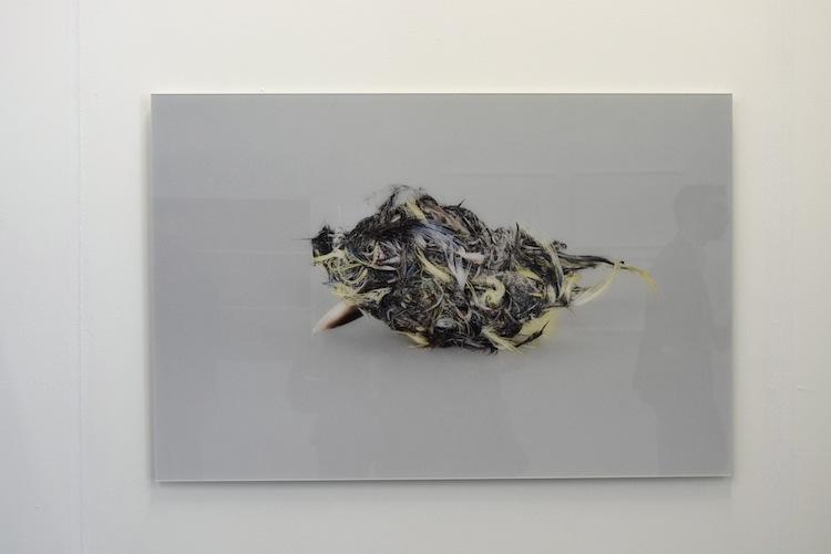 Martin Brandsma, Johan Deumens Gallery